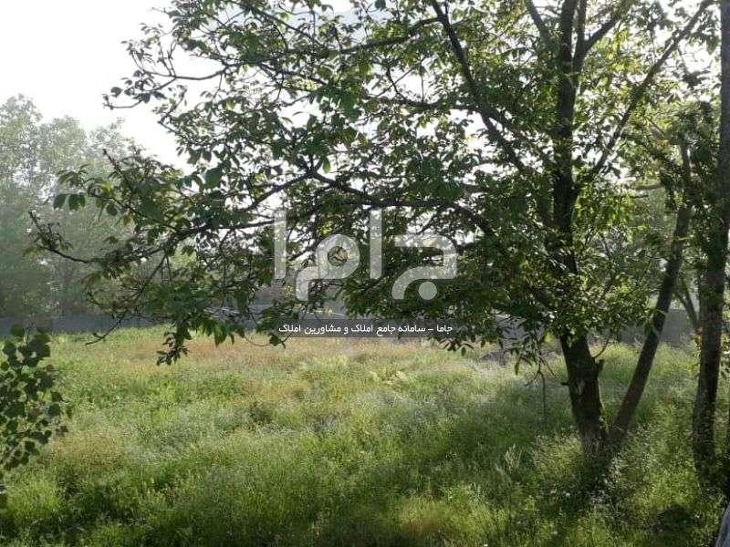 فروش زمین ییلاقی در سوادکوه